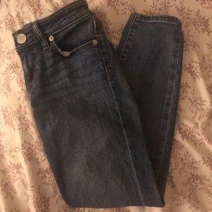 Anne Taylor LOFT ankle skinny jeans